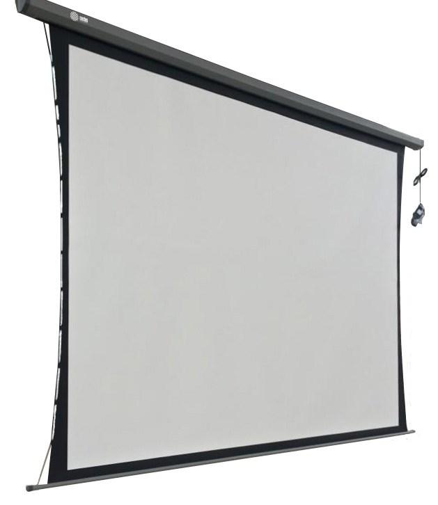 Экран Cactus Professional Tension Motoscreen CS-PSPMT-168x299 135 16:9 настенно-потолочный рулонный черный (моторизованный привод).