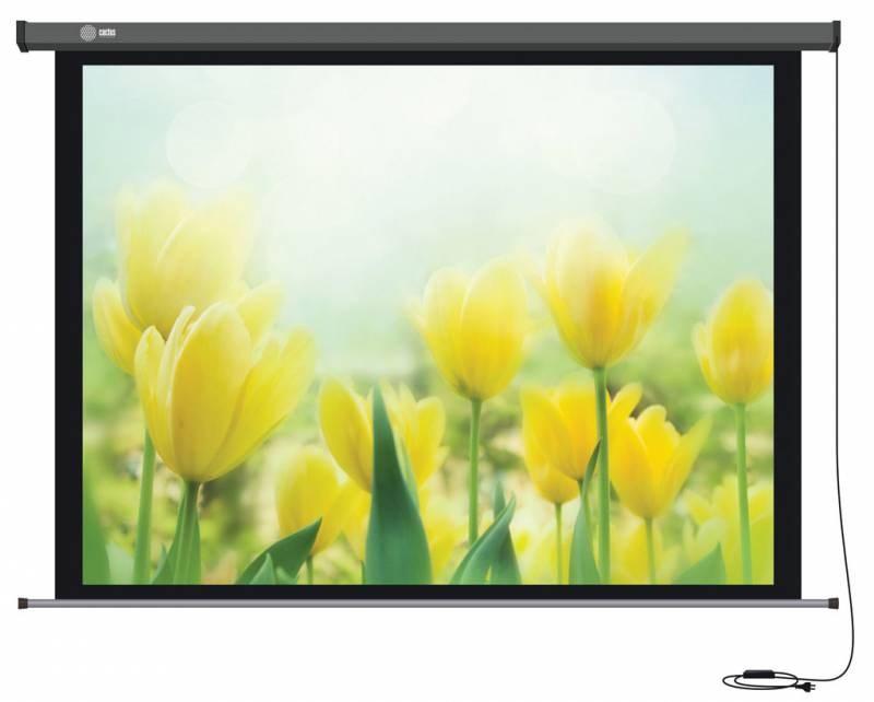 Экран Cactus Professional Motoscreen CS-PSPM-183X244 120