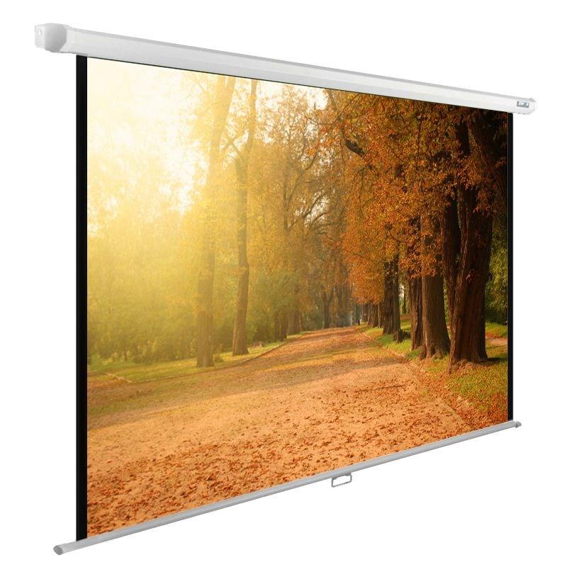 Экран Cactus WallExpert CS-PSWE-200x125-WT 90 16:10 настенно-потолочный рулонный