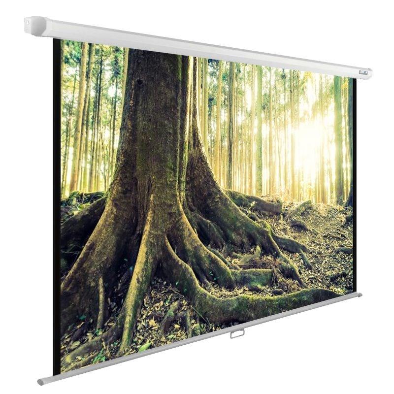 Экран Cactus WallExpert CS-PSWE-220x220-WT 120