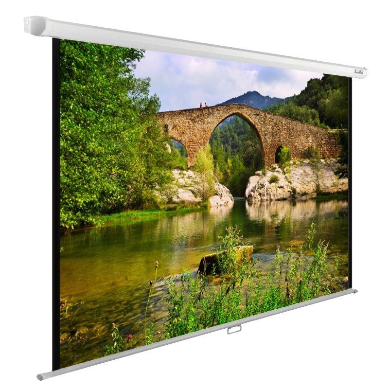 Экран Cactus WallExpert CS-PSWE-220x165-WT 110