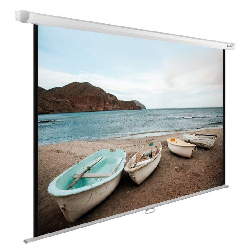 Экран Cactus WallExpert CS-PSWE-220x138-WT 100 16:10 настенно-потолочный рулонный