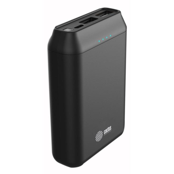 Мобильный аккумулятор Cactus CS-PBFSST-10000 Li-Pol 10000mAh 2A+2.4A черный 2xUSB фото
