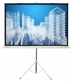"""Экран Cactus Triscreen CS-PST-104x186 84"""" 16:9 напольный рулонный белый - фото 10821"""