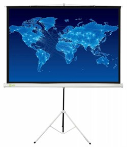 Экран Cactus 150x150см Triscreen CS-PST-150x150 1:1 напольный рулонный белый. - фото 10836