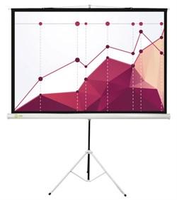 Экран Cactus 180x180см Triscreen CS-PST-180x180 1:1 напольный рулонный белый. - фото 10842