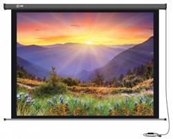 """Экран Cactus Professional Motoscreen CS-PSPM-149x265 120"""" 16:9 настенно-потолочный рулонный (моторизованный привод). - фото 10858"""