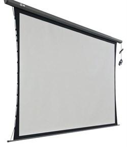 Экран Cactus 149x265см Professional Tension Motoscreen CS-PSPMT-149x265 16:9 настенно-потолочный рулонный черный (моторизованный привод). - фото 10859