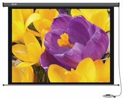 Экран Cactus 168x299см Professional Motoscreen CS-PSPM-168x299 16:9 настенно-потолочный рулонный (моторизованный привод) - фото 10861