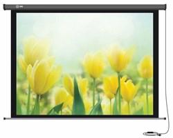 """Экран Cactus Professional Motoscreen CS-PSPM-183X244 120"""" 4:3 настенно-потолочный рулонный (моторизованный привод) - фото 10863"""