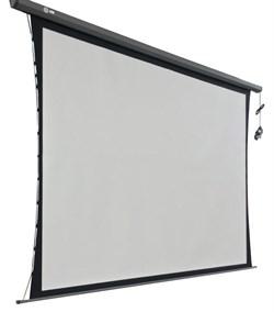"""Экран Cactus Professional Tension Motoscreen CS-PSPMT-183X244 120"""" 4:3 настенно-потолочный рулонный черный (моторизованный привод). - фото 10864"""
