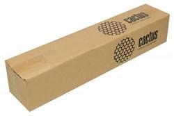Бумага Cactus CS-PP230-61030 610мм-30м, 230г/м2, белый универсальная (с покрытием) - фото 11112