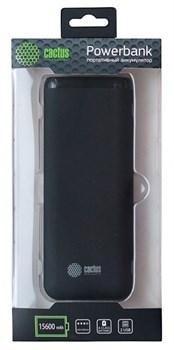 Мобильный аккумулятор Cactus CS-PBHTST-15600 Li-Ion 15600mAh 2.4A+2.4A черный 2xUSB - фото 11619