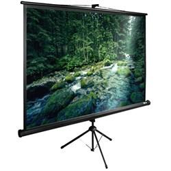 """Экран Cactus TriExpert CS-PSTE-220х165-BK 110"""" 4:3 напольный рулонный - фото 11872"""