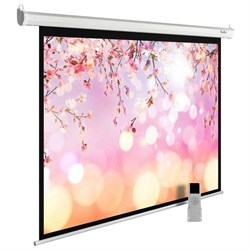 """Экран Cactus MotoExpert CS-PSME-220X220-WT 120"""" 1:1 настенно-потолочный рулонный белый (моторизованный привод). - фото 11897"""