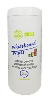 Салфетки влажные Cactus CS-WB075 для маркерных досок (туба 75 шт) - фото 12655