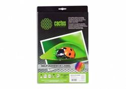 Этикетки Cactus С-30525212 A4 52.5x21.2мм 56шт на листе, 50л. - фото 9620