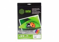Этикетки Cactus С-30646338 A4 33.8x64.6мм 24шт на листе, 50л. - фото 9622