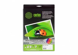 Этикетки Cactus С-30105742 А4 105x74.2 мм 8 шт на листе/50 л - фото 9626