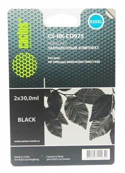 Заправочный набор Cactus CS-RK-CD975 черный (2x30мл) HP Officejet 6000/6500/7000/7500 - фото 9755
