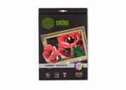 Холст Cactus CS-СA426010 A4, 300г/м2, 10л. для струйной печати