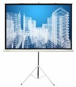Экран Cactus 104.4x186см Triscreen CS-PST-104x186 16:9 напольный рулонный белый.