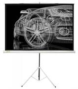 Экран Cactus 124.5x221см Triscreen CS-PST-124x221 16:9 напольный рулонный белый.