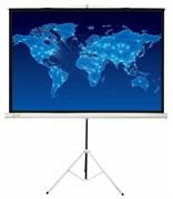 Экран Cactus 150x150см Triscreen CS-PST-150x150 1:1 напольный рулонный белый.