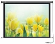 Экран Cactus 183x244см Professional Motoscreen CS-PSPM-183x244 4:3 настенно-потолочный рулонный (моторизованный привод).