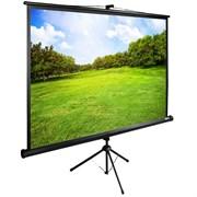 """Экран Cactus TriExpert CS-PSTE-200х150-BK 99 """" 4:3 напольный (200х150 см.)"""