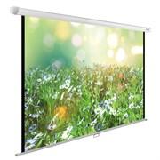 """Экран Cactus WallExpert CS-PSWE-200x200-WT 110"""" 1:1 настенно-потолочный рулонный"""