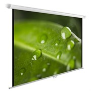 """Экран Cactus WallExpert CS-PSWE-200x150-WT 100"""" 4:3 настенно-потолочный рулонный"""