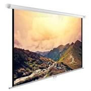 """Экран Cactus WallExpert CS-PSWE-240x180-WT 120"""" 4:3 настенно-потолочный рулонный"""