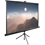 "Экран Cactus TriExpert CS-PSTE-180x180-BK 100"" 1:1 напольный рулонный"