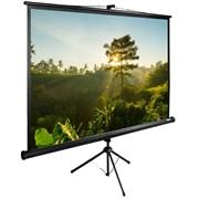"""Экран Cactus TriExpert CS-PSTE-200х200-BK 110"""" 1:1 напольный рулонный"""