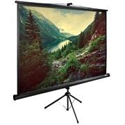 """Экран Cactus TriExpert CS-PSTE-220х220-BK 127"""" 1:1 напольный (220х220 см.)"""