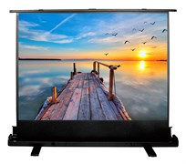 "Экран Cactus FloorExpert CS-PSFLE-200x113 91"" 16:9 напольный (200x113 см.)"