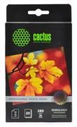 Фотобумага Cactus Prof CS-SGA628020 10x15, 280г/м2, 20л., белый полуглянцевое для струйной печати